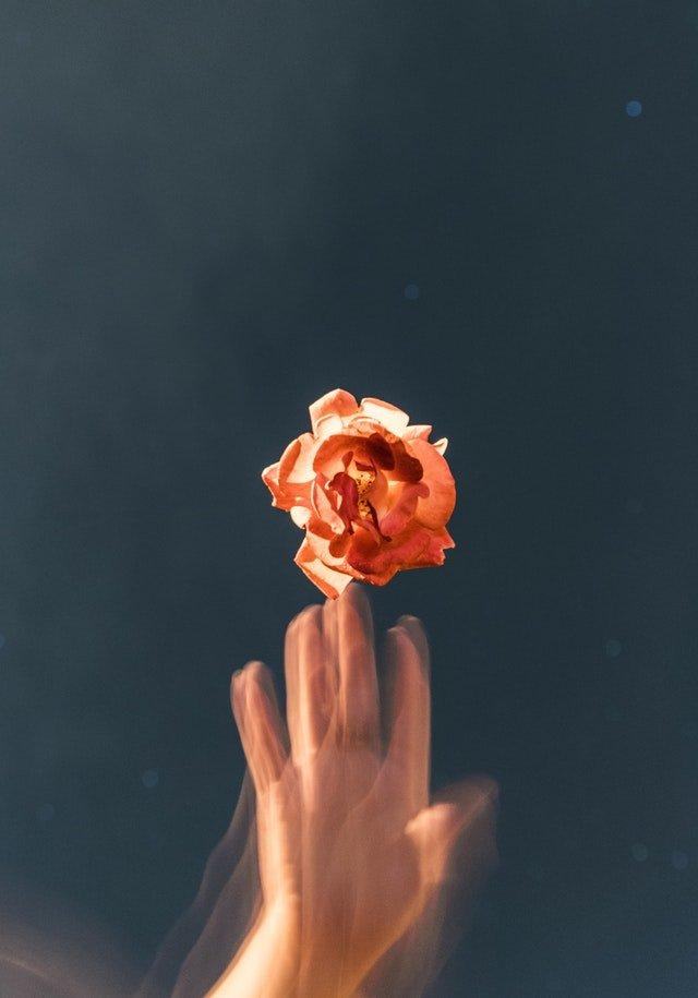 Tears in heaven | New promise | Tears in heaven meaning | You promise