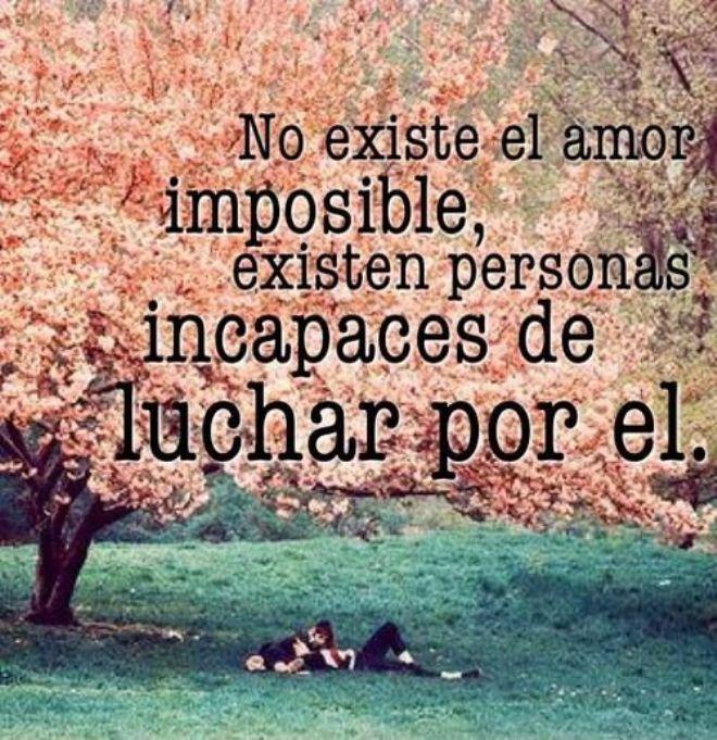 No Existe Amor Imposible Poeta Inexperto