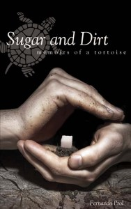 Sugar and Dirt Cover