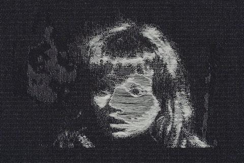 Barbara Howey - Jacquard Weave (detail)