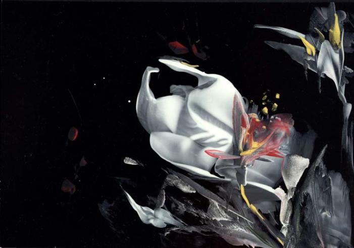 Natalie Dekel - Bouquet from Heaven, 2009