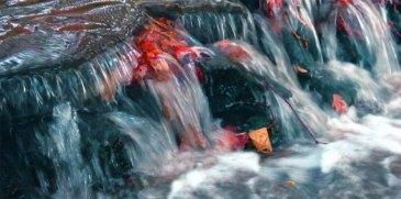 Photo of water flow - gil dekel