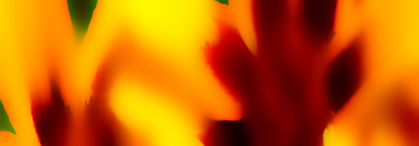 Colourenergy 20 (artwork by Gil Dekel)