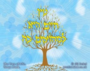Tree of Life, Tanya Book. (© Gil Dekel)