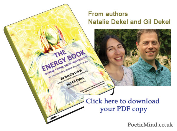 Energy Book by Natalie and Gil. Click to buy.