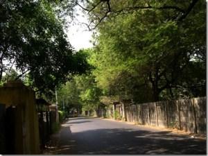 Hot Chennai Afternoon