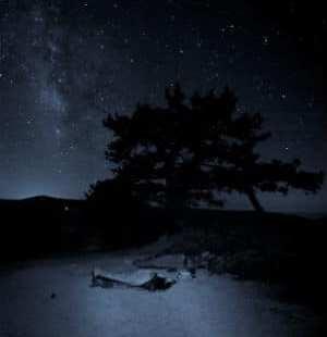 Stars in the Dark