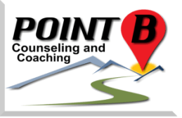 Point B Website solo