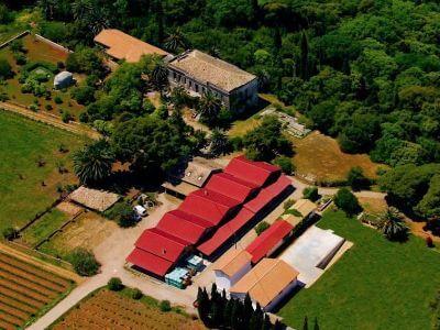 Mercouri Estate   Peloponnese wines   The Vineyards of Peloponnese   Peloponnese Wine Region   Peloponnese Wine Roads   Wines and Grape Varieties of Peloponnese   Peloponnese wineries   Wines from the Peloponnese