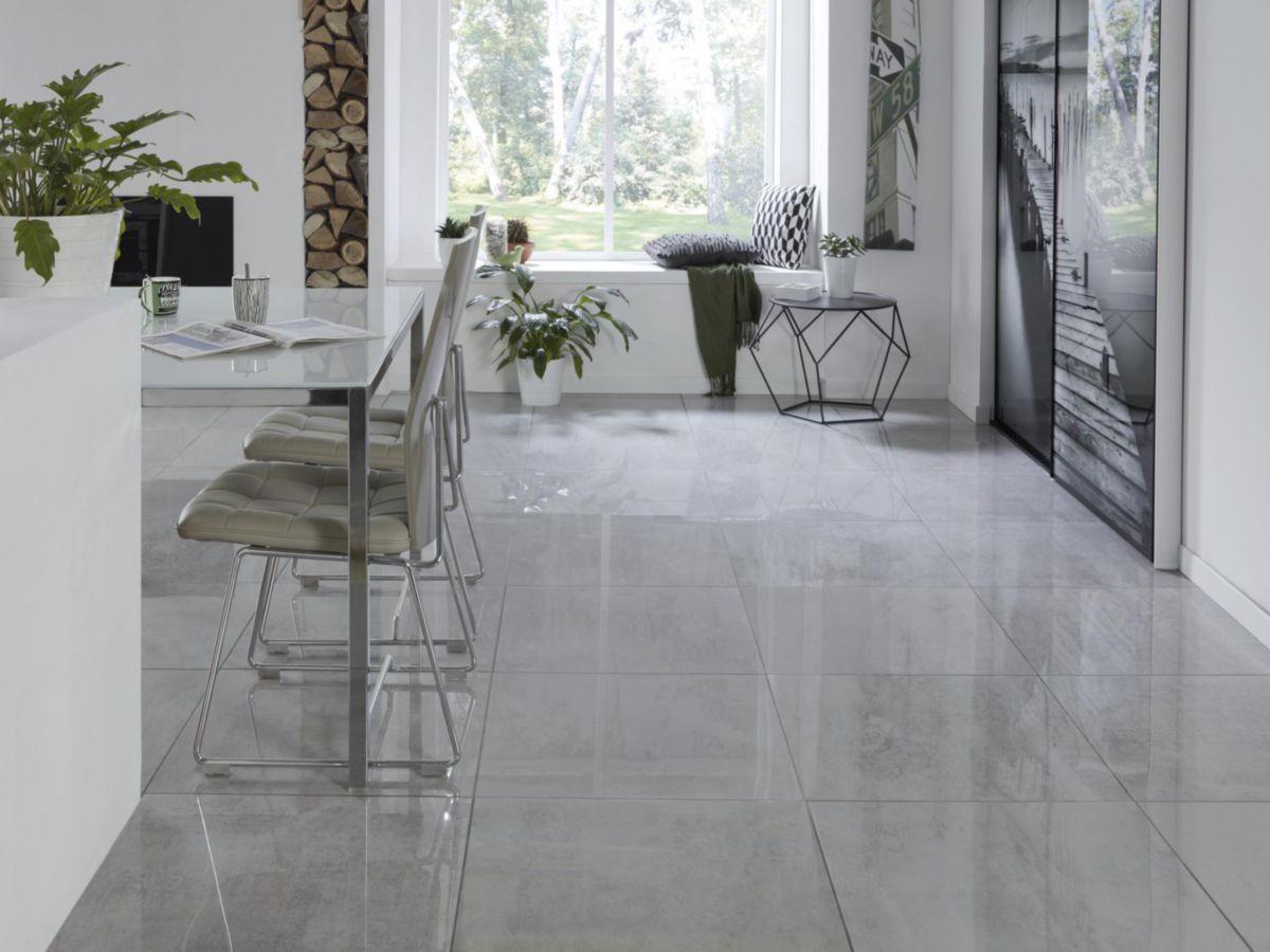 Arte Design Carrelage Sol Interieur Gres Cerame Emaille Igloo Gris Clair Brillant Rectifie 60x60 Cm Point P