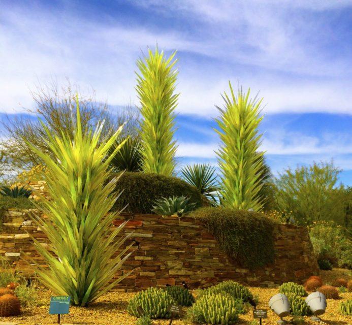 Desert Botanical Gardens, Chihuly Exhibit