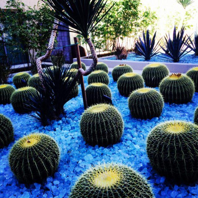 The W Scottsdale, AZ
