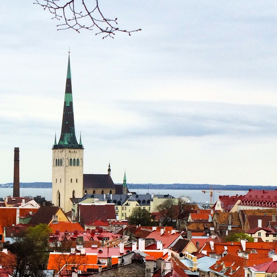 Tallinn Old Town, Time in Tallinn, Talon Guide, one day in Tallinn, Estonian Food