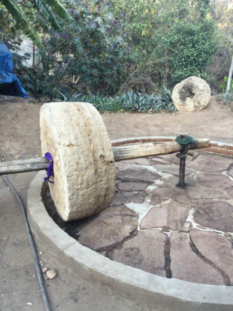 Oaxacan, mezcal, agave plant, maguey plant, sealing a mezcal bottle, mescal