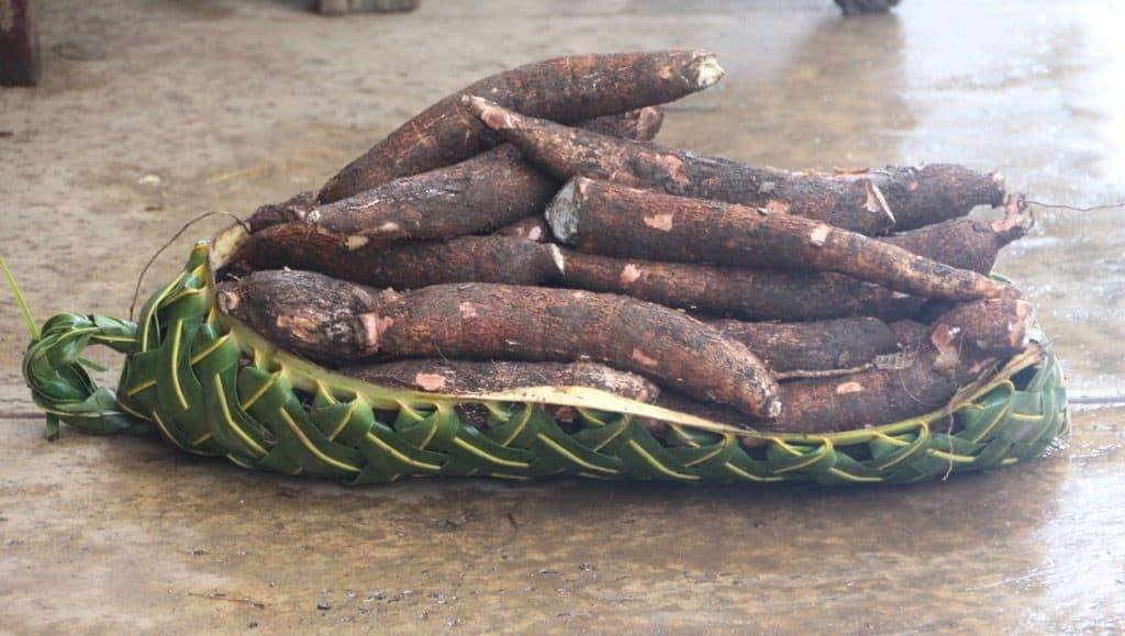 Tongan food includes Taro