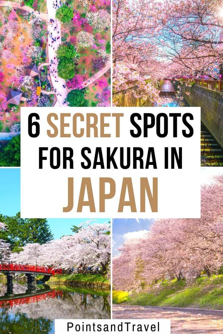 sakura bloom, sakura, cherry blossom festival, Japanese cherry blossom tree, 6 secret spots for sakura in japan, the most underrated places for cherry blossoms in Japan