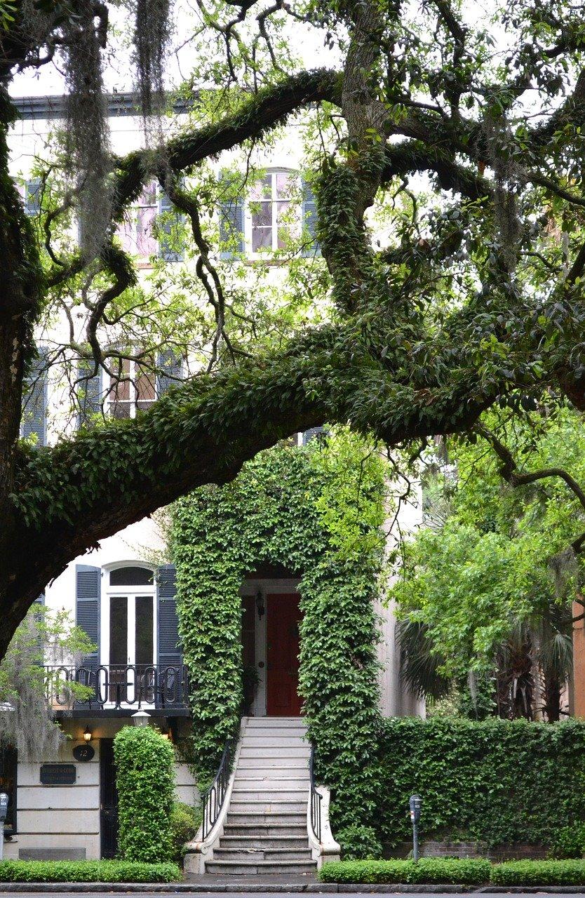 Things to do in Savannah GA