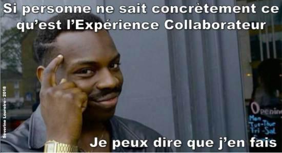Experience-Collaborateur-meme-humouristique-Severine-Loureiro