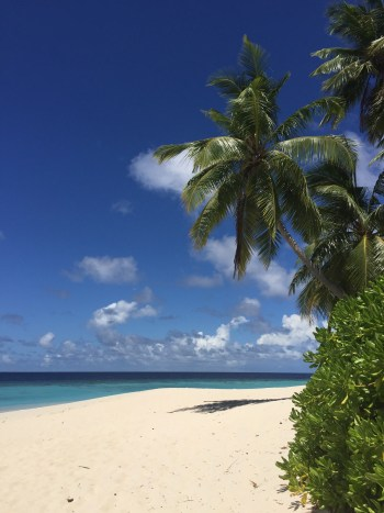 hotel review park hyatt maldives pool villa save points diamond