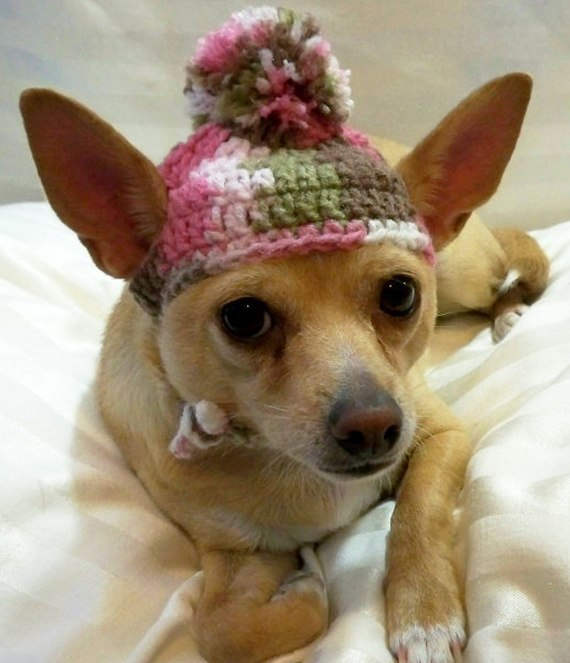Dog hat crocheted Pink camouflage Xsmall or Small