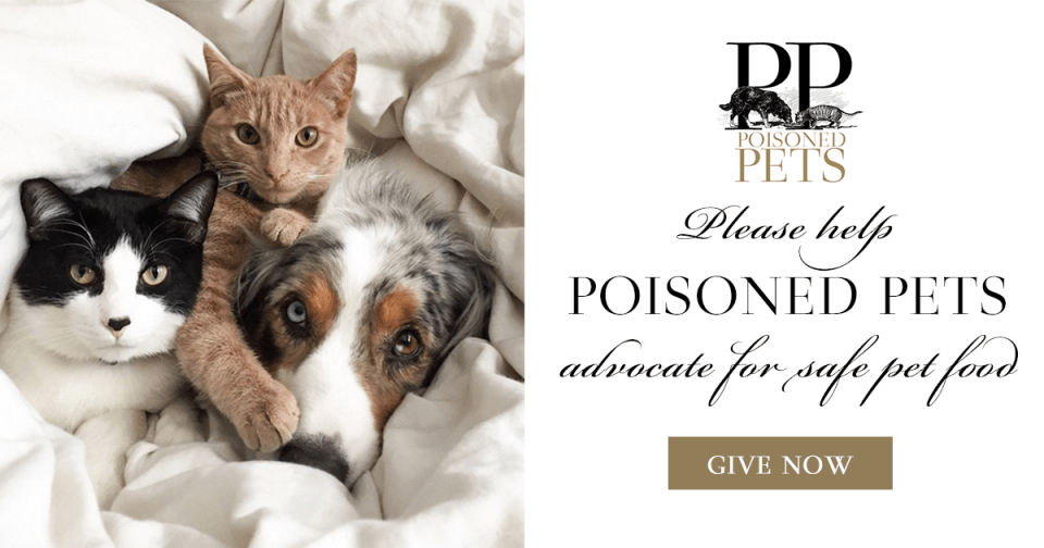 dogs cats pet food poisoning recalls warnings news