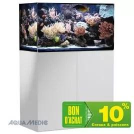 aquarium marin grand choix d aquarium