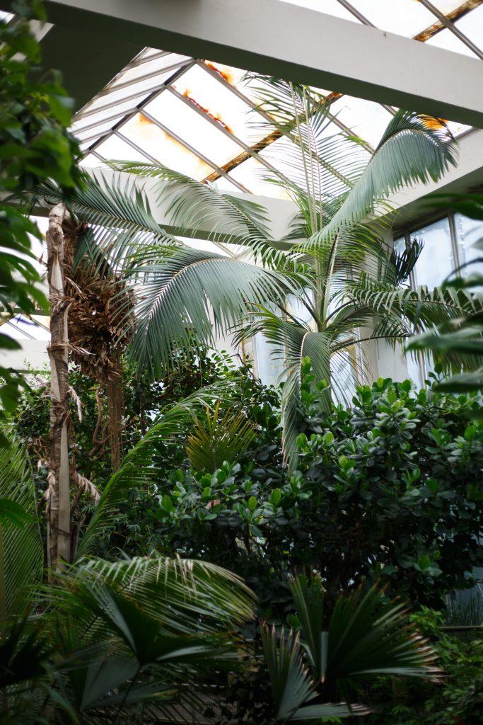 Jardin Botanique de l Université de Strasbourg rénovation de la