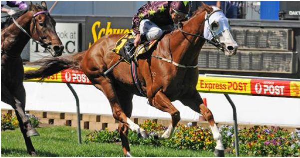 TAB horse races