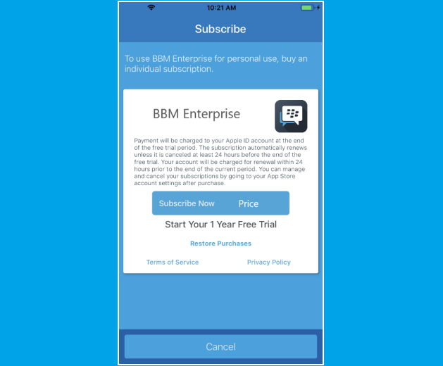 BBM Enterprise subscription