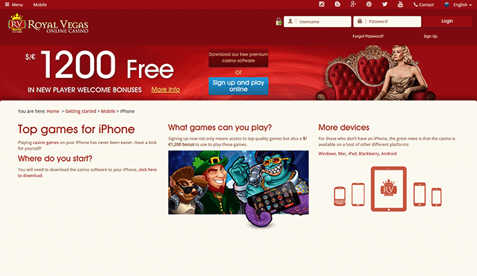 Royal Vegas Casino Download or Instant play