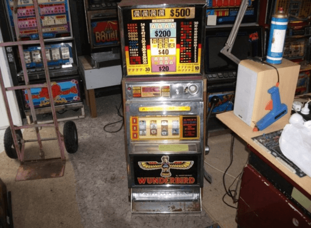 Trademe auction for pokies
