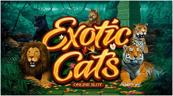 Exotic cats pokies