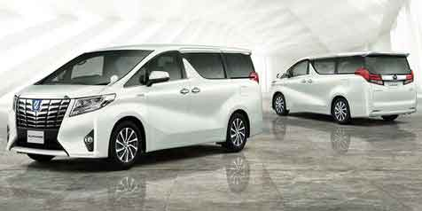 Rental Alphard Timika