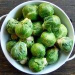 Clementine hates brussel sprouts, Polari Magazine