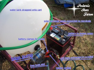 Water tank, battery, hose assembly