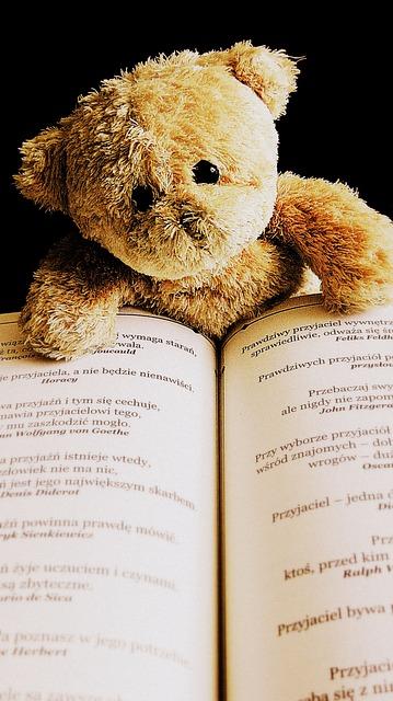 teddy-422370_640