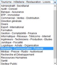 viadeo-liste secteurs