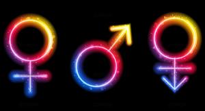 """ViewImage 300x162 - Feminino ou masculino? Google+ permite """"personalizar"""" definição de gênero"""