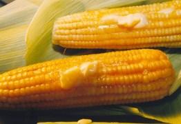 PROCON: Preço da mão do milho tem variação de mais de R$ 20