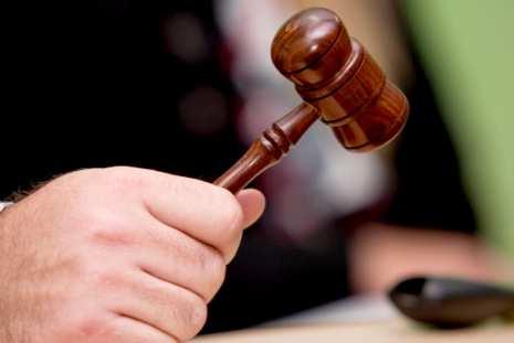 leilao - Após críticas, gata Persa não será leiloada pela Justiça Federal nesta quarta