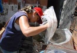DURANTE O CARNAVAL: Prefeitura de João Pessoa tem esquema especial de combate ao Aedes Aegypti