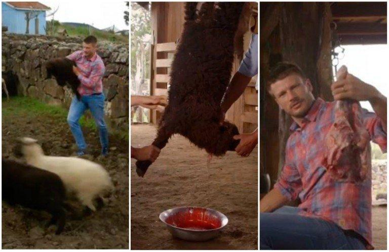 rodrigo hilbert - Rodrigo Hilbert gera revolta ao matar filhote de ovelha em seu programa de culinária