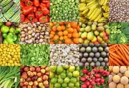 Modelo de gestão do Banco de Alimentos da PMJP é referência para o serviço no país