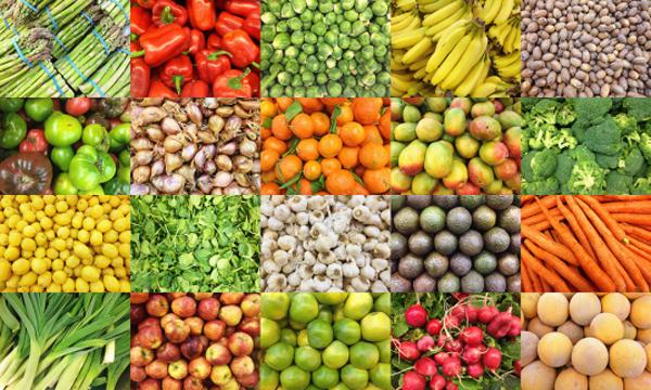 alimentos - Modelo de gestão do Banco de Alimentos da PMJP é referência para o serviço no país