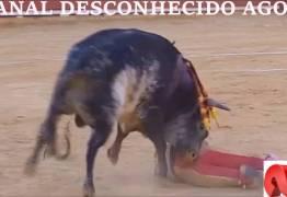 Toureiro profissional premiado é morto em tourada na Espanha – VEJA O VÍDEOS