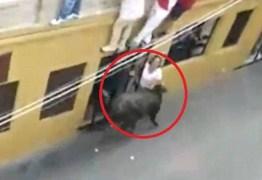INSTINTO ANIMAL: Mulher leva chifrada durante festejo com touros na Espanha e morre – VEJA VÍDEO