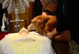 Cão de Kid Vinil fica com o companheiro que o músico teve por 30 anos