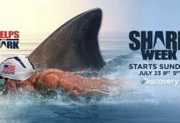 Phelps perde corrida contra tubarão, mas quer revanche – VEJA VÍDEO