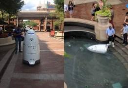 Robô policial é encontrado 'morto' boiando em fonte
