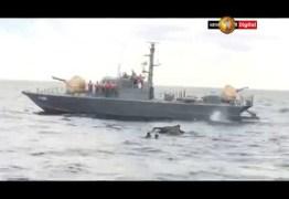 SURPREENDENTE:  Marinha resgata elefante em alto-mar após 12 horas de operação – VEJA VÍDEO